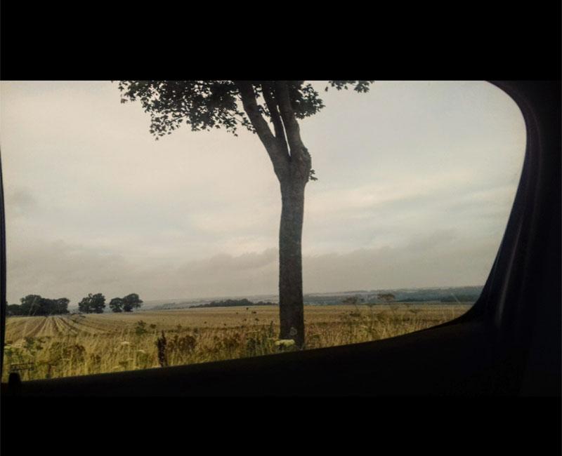 Un paysage vu d'une automobile.