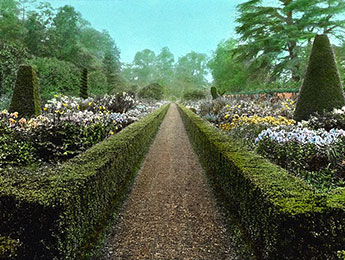 Un incroyable parc en Angleterre, illustrant un objet sonore de Boris Billier pour Magazine Aléatoire.